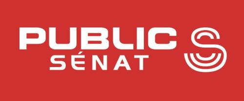 Logo public senat blanc sans perspective